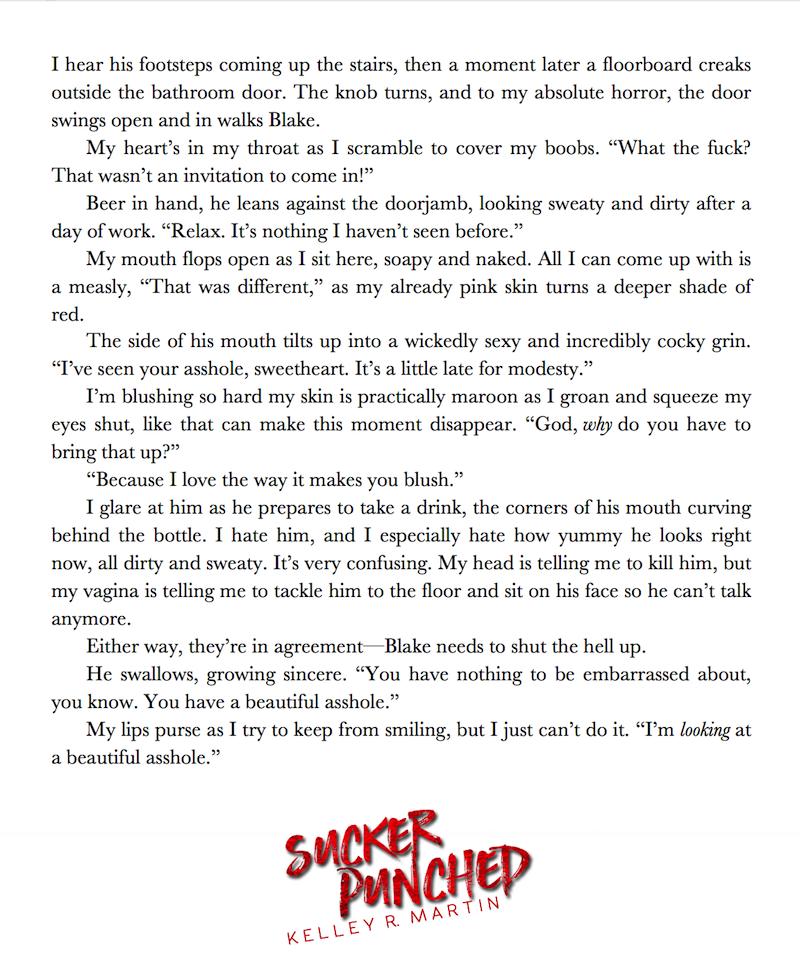 sucker-punched-excerpt