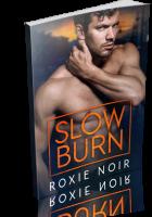 Blitz Sign-Up: Slow Burn by Roxie Noir