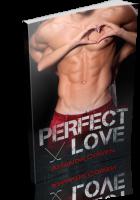 Tour: Perfect Love by Amanda Cowen