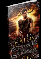 Blitz Sign-Up: Fallen Halos by Erin Hayes & Rebecca Hamilton