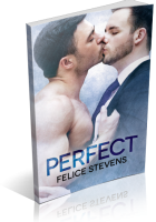 Review Opportunity: Perfect by Felice Stevens