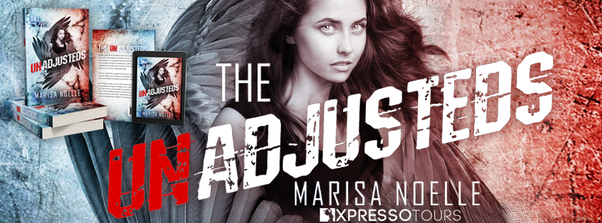 Cover Reveal: The Unadjusteds by Marisa Noelle