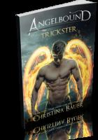 Tour: Trickster by Christina Bauer