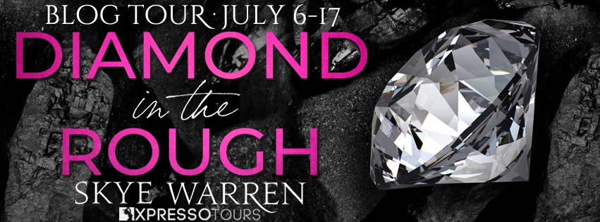 Blog Tour: Diamond in the Rough — Review + Giveaway (INTL)