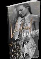 Blitz Sign-Up: Violent Beginnings by J.L. Beck & C. Hallman